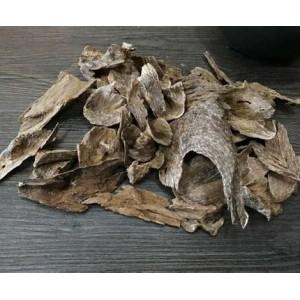什么是沉香,沉香产地和分类有哪些?